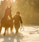 Pferdefotografie bei München: Mädchen mit Araber im Schnee