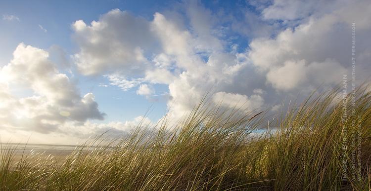 dunes-sidesun