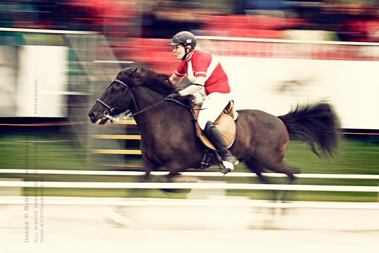 islandpferde-wm-2011-p2-tania