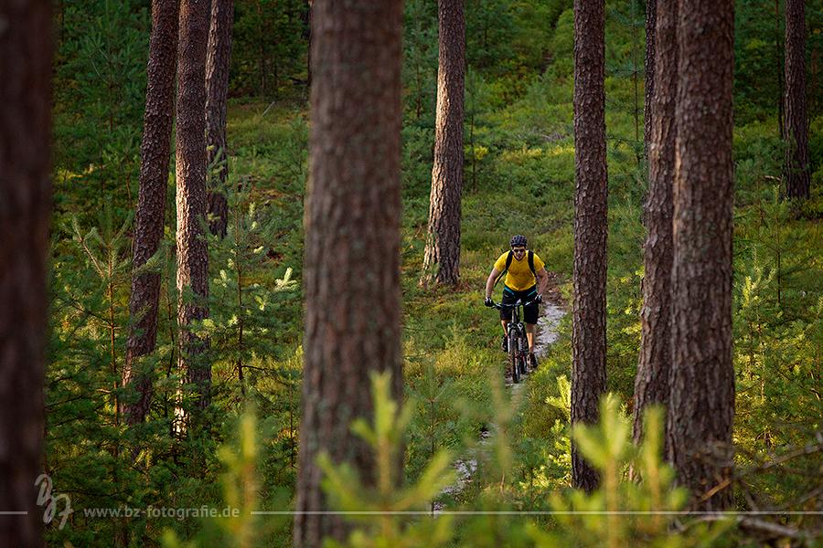biker-wald