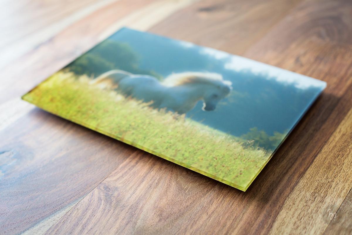wandbild-acrylglas