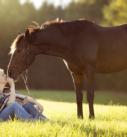 Pferdefotografie bei München: Frau mit Warmblutstute