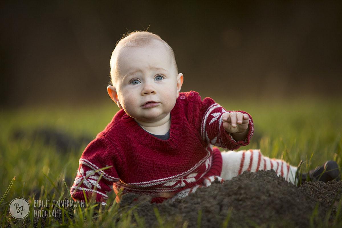 babyfotos-wald-ebersberg-007