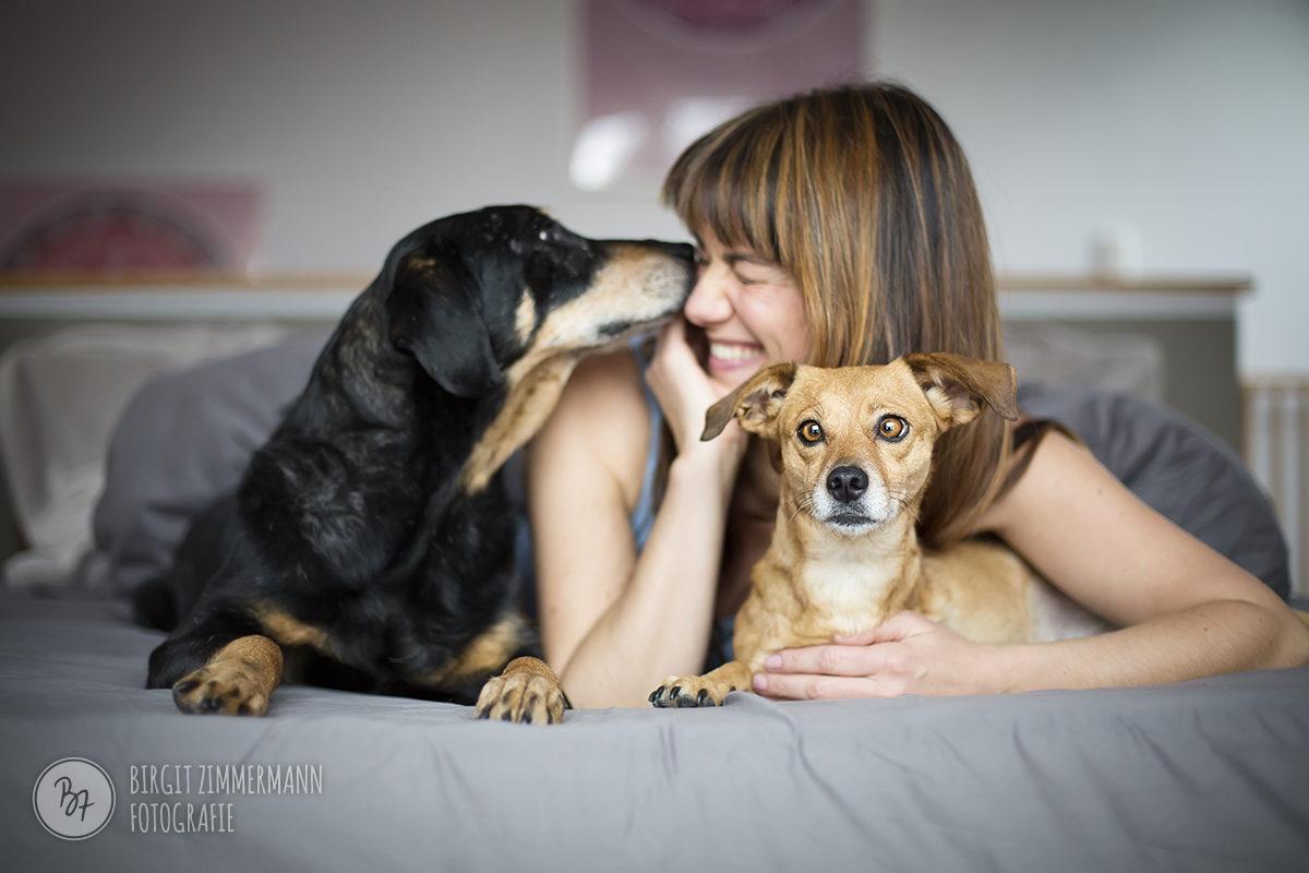 homeshooting-hunde-muenchen-007