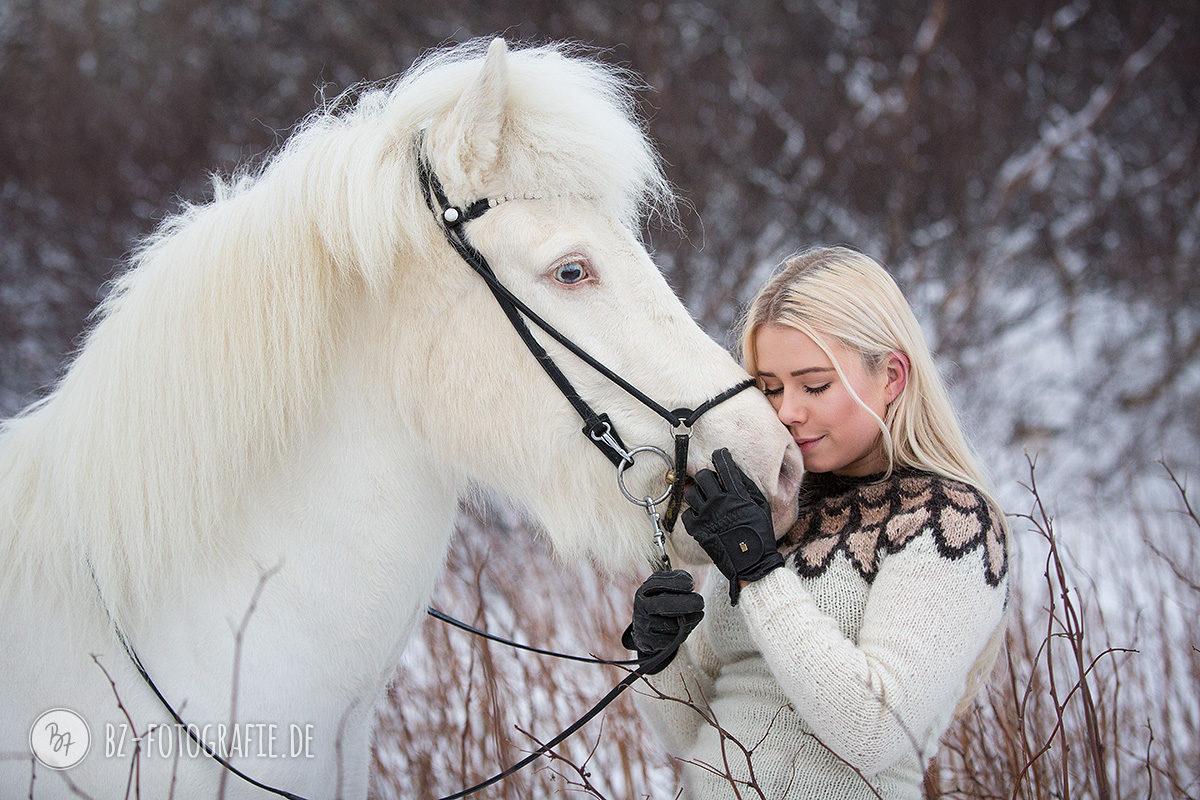 islandpferd-albino-geritten-schnee-011