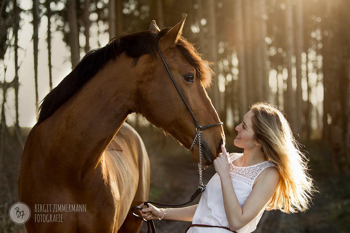 pferd-maedchen-lusitano-romantisch