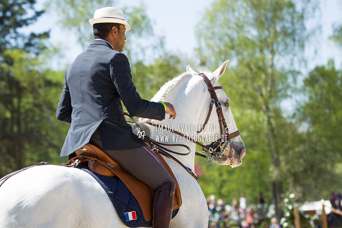 working-equitation-em-2016-038