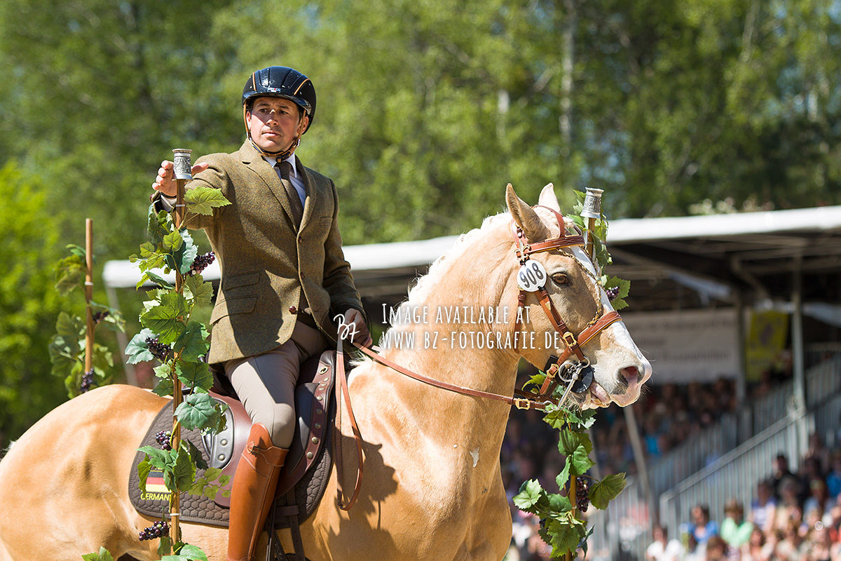 working-equitation-em-2016-042