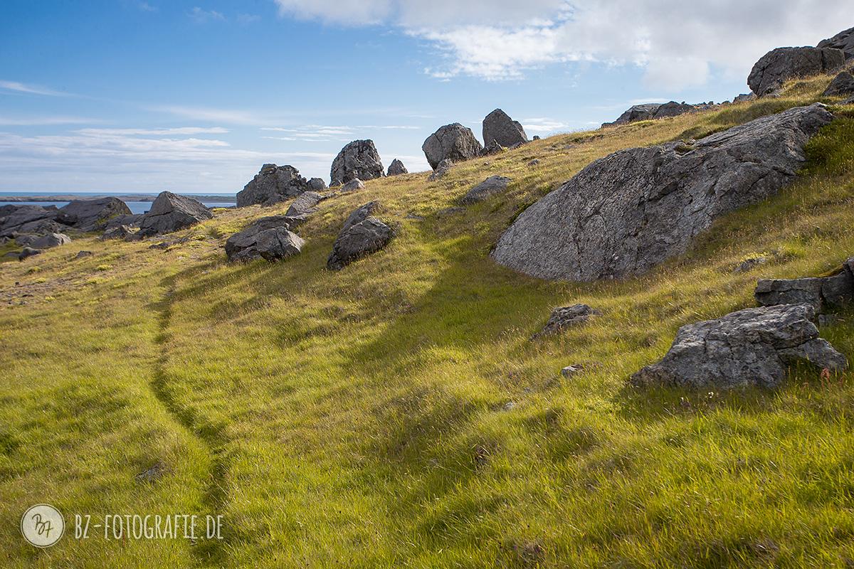 island-fotoreise-natur-021
