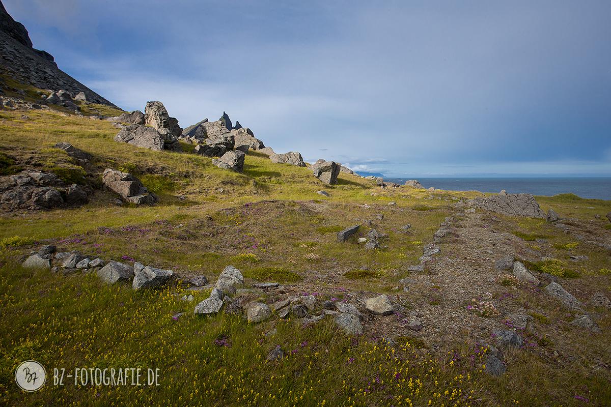 island-fotoreise-natur-024
