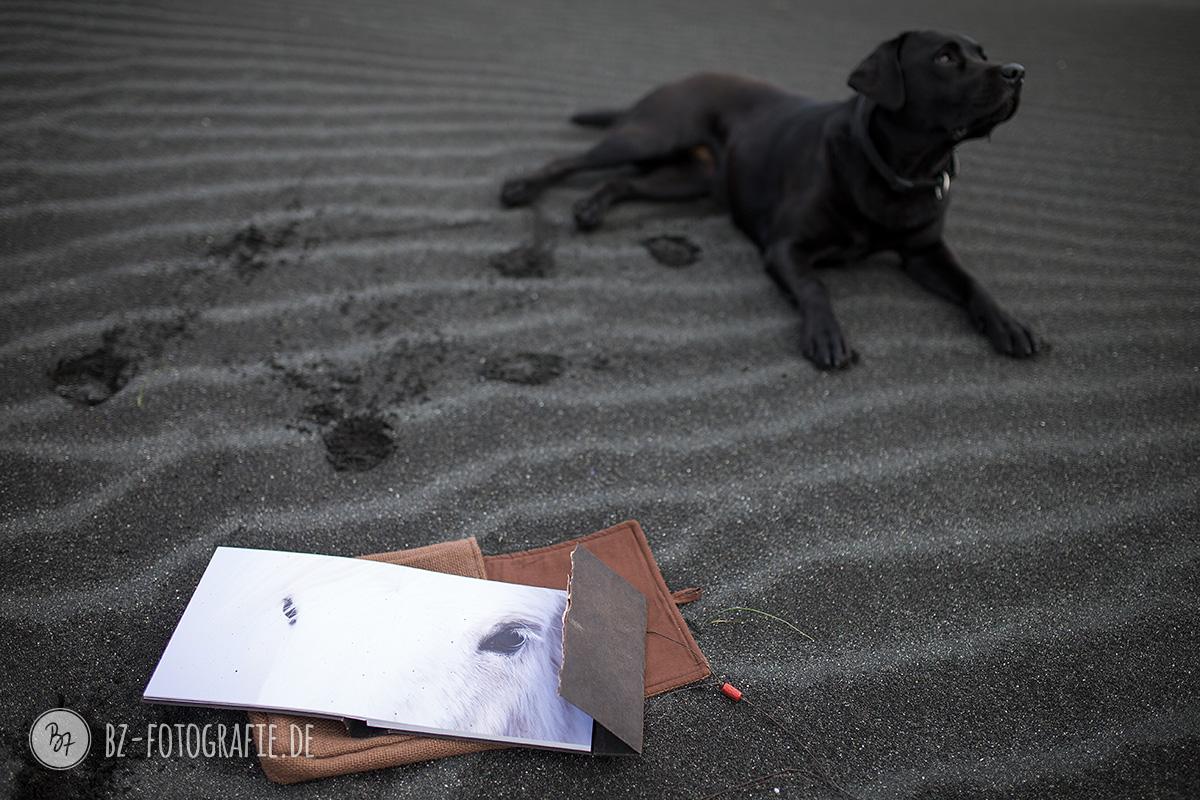 island-labrador-schwarz-003