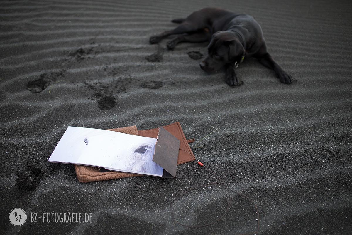 island-labrador-schwarz-004