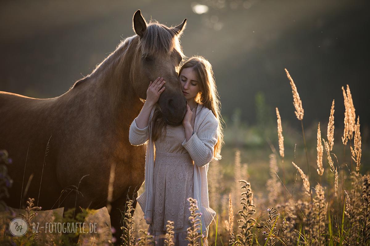 Frau Wird Von Pferd Besamt