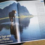 artikel-islandpferd-0516-1