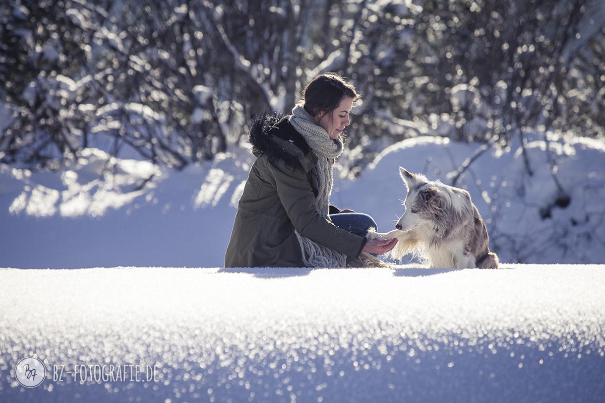 hundefotos-schnee-berge-jan17-2-1