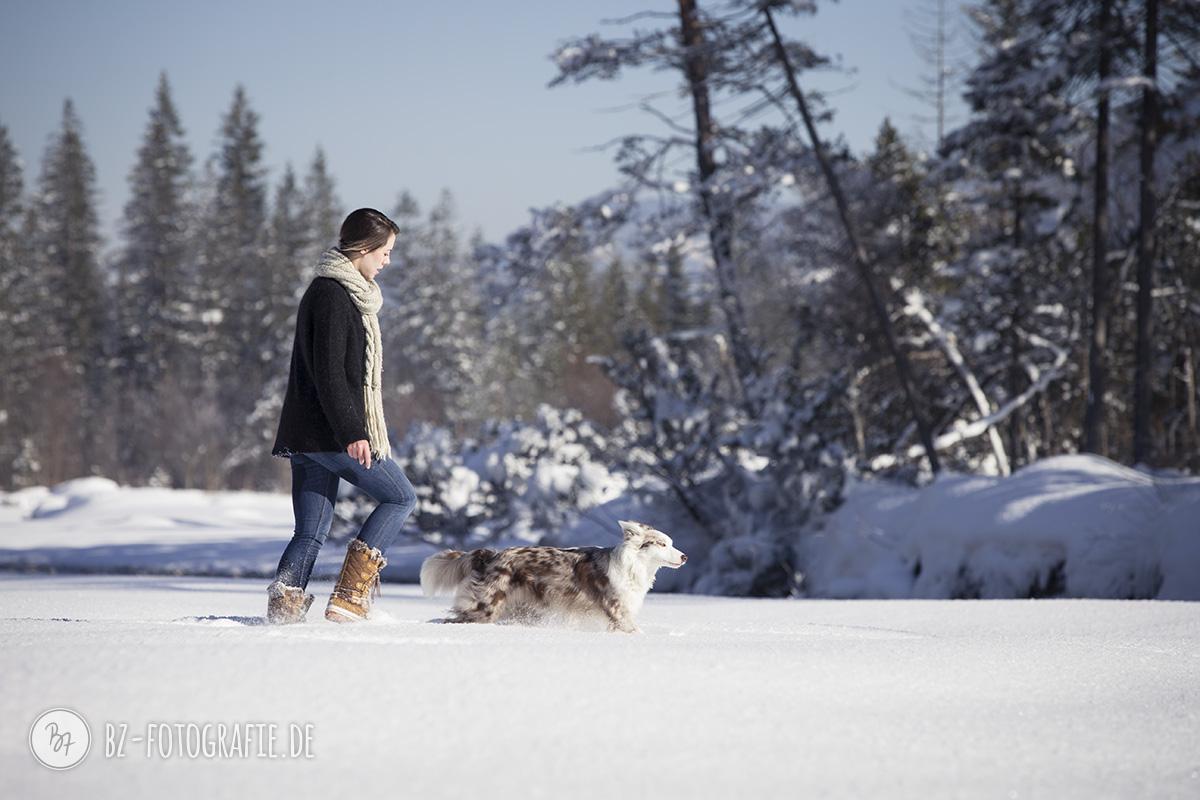 hundefotos-schnee-berge-jan17-2