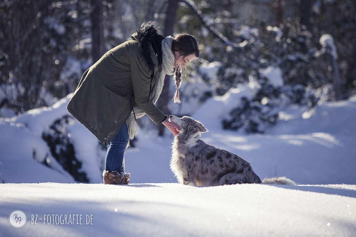 hundefotos-schnee-berge-jan17-4-1
