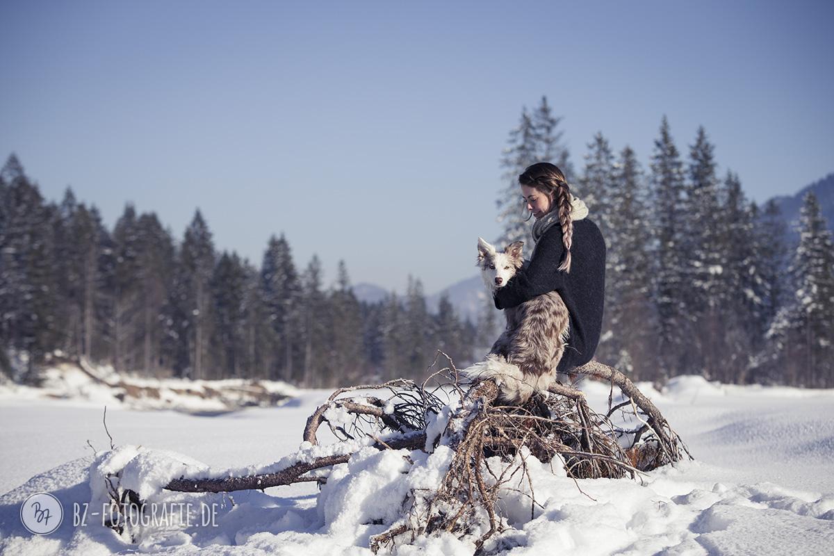 hundefotos-schnee-berge-jan17-5