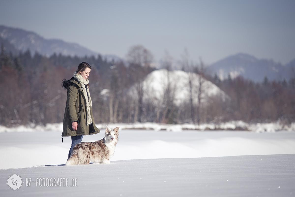 hundefotos-schnee-berge-jan17-9-1