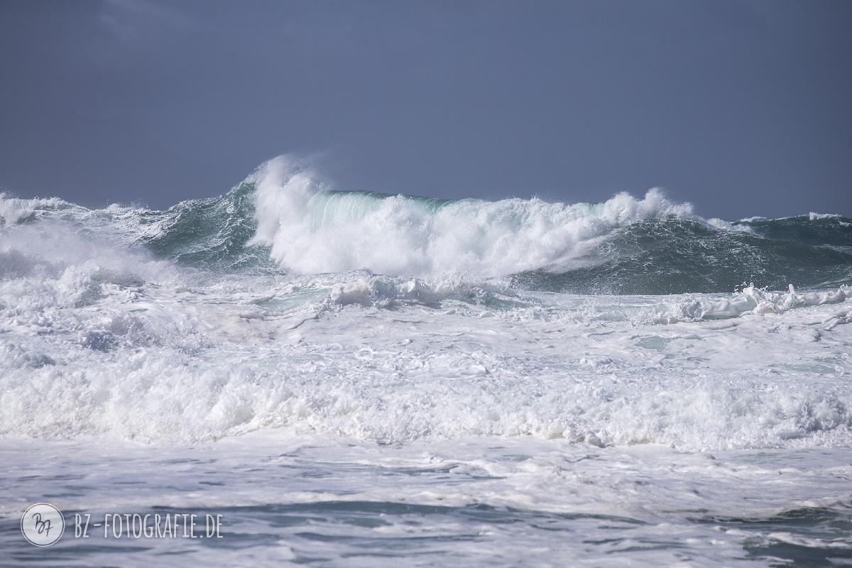 fuerteventura-feb2017-06