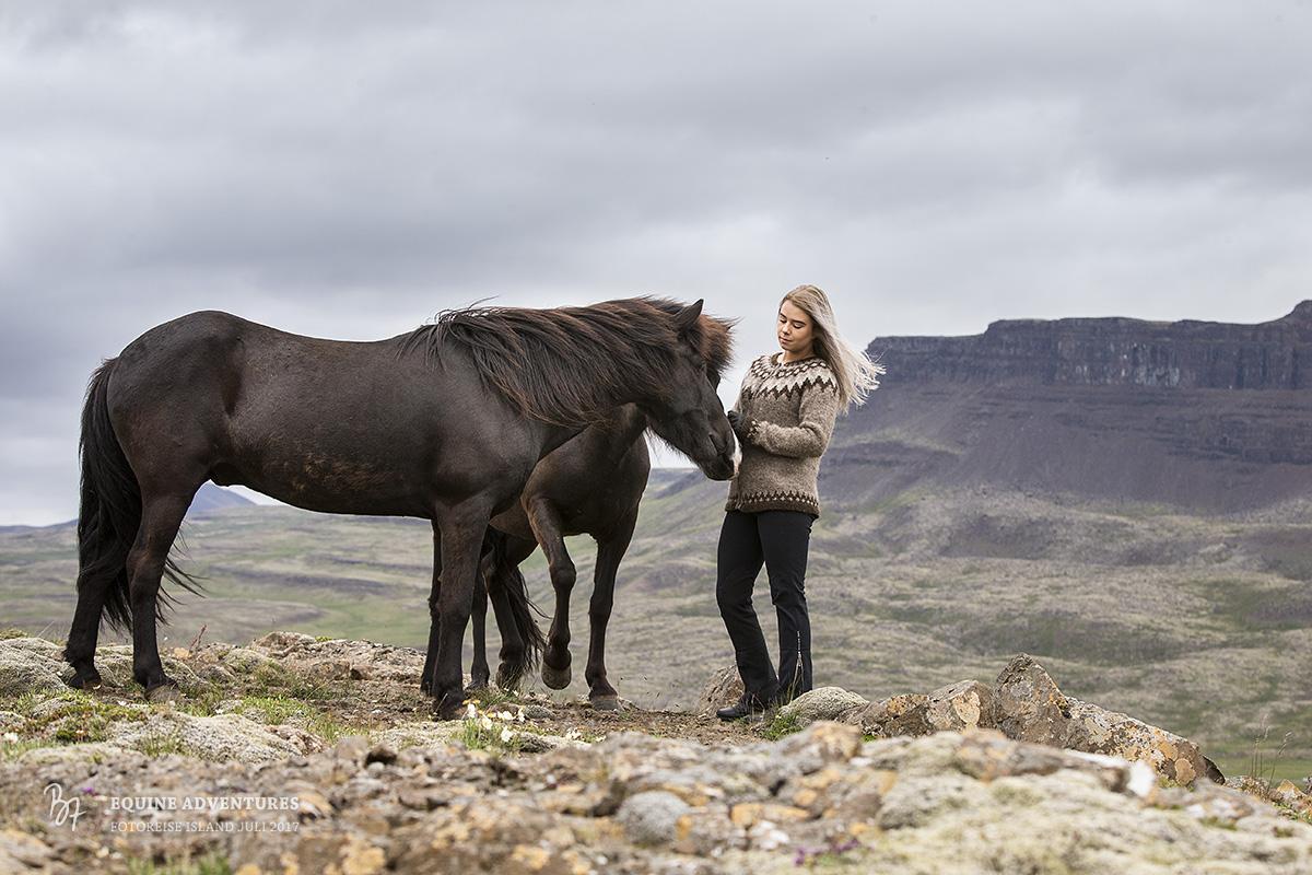 fotoreise-island-frau-pferde-hund-001