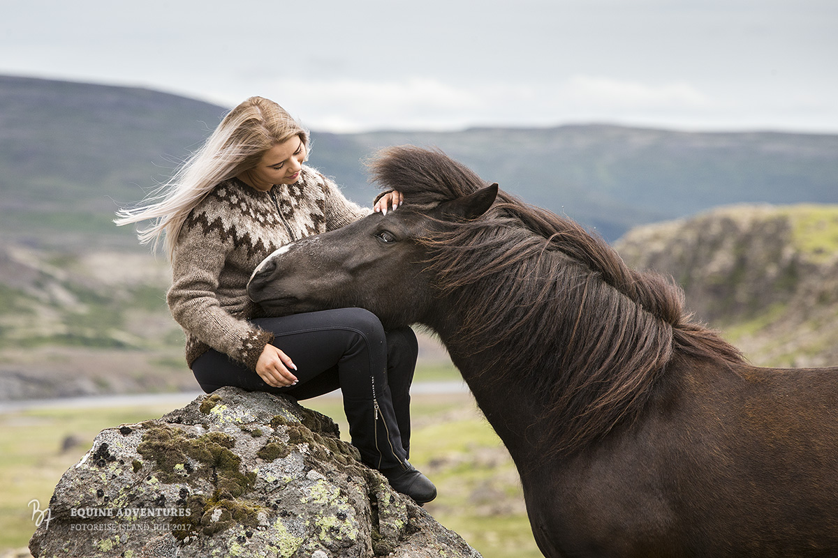fotoreise-island-frau-pferde-hund-002