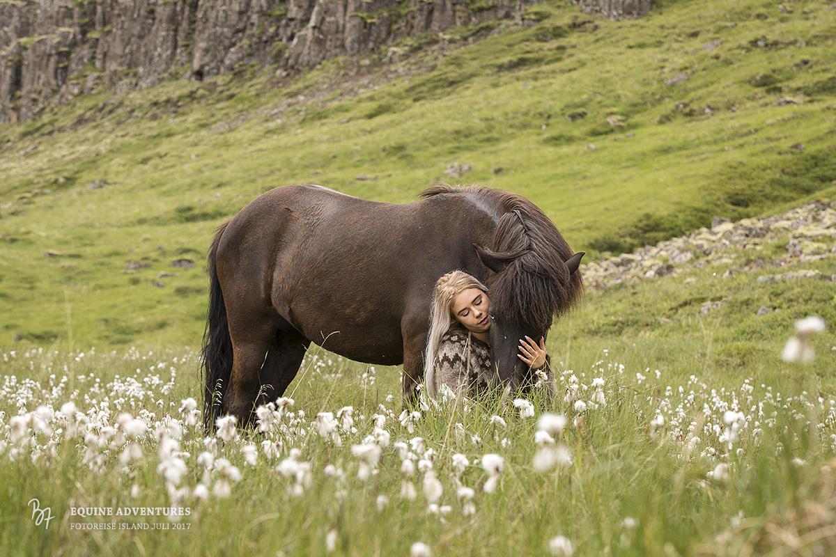 fotoreise-island-frau-pferde-hund-011