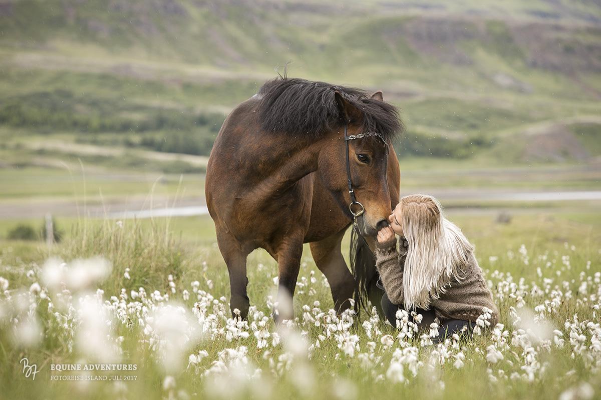 fotoreise-island-frau-pferde-hund-012