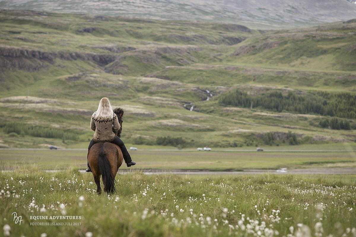 fotoreise-island-frau-pferde-hund-014