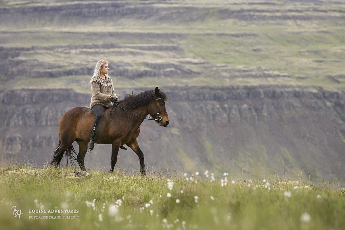 fotoreise-island-frau-pferde-hund-015