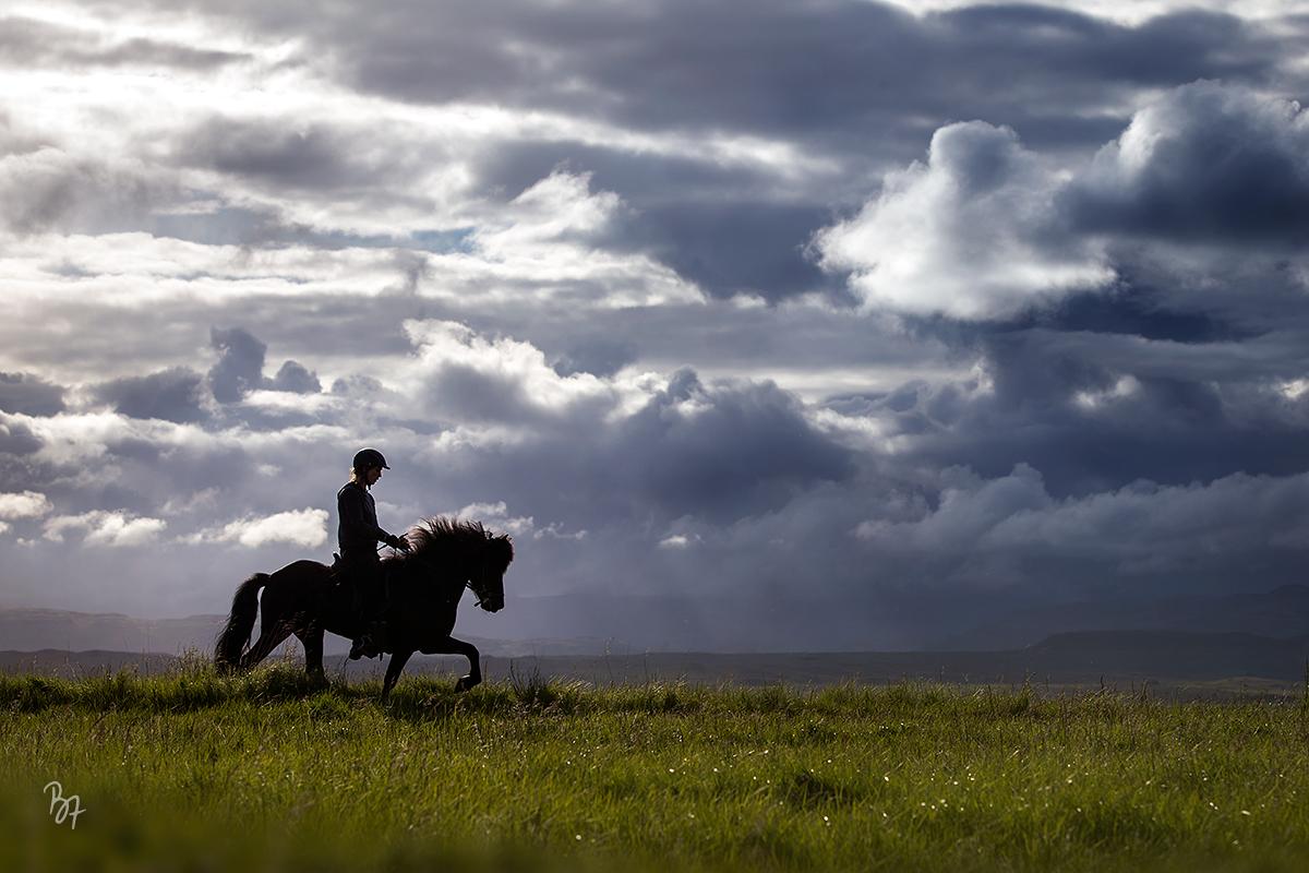 Island Reiten Tölt Wolkenspiel