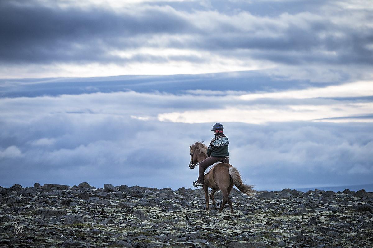 pferdefotograf-island-nachtritt-005