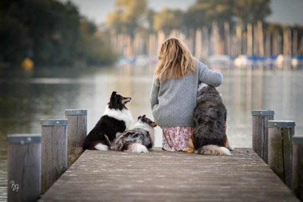 Hundefotos am Chiemsee