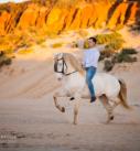 Pferdefotografie: Reiter auf Iberer am Strand