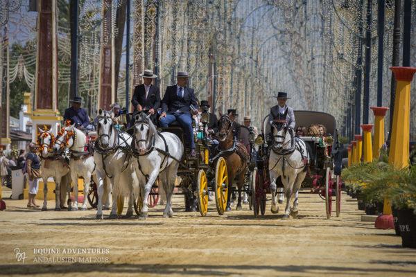 Fotoreise Andalusien Mai 2018 – Feria del Caballo und Cartuja