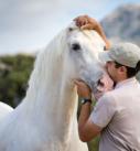 Pferdefotografie: Mann mit PRE-Hengst