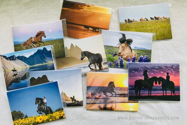 Die neuen Fotopostkarten sind fertig