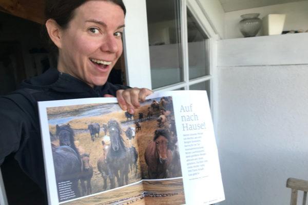 Island-Artikel in der Cavallo
