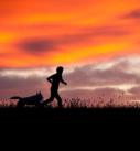 Hundefotografie bei München: Silhouette von Mann mit Hund im Abendrot
