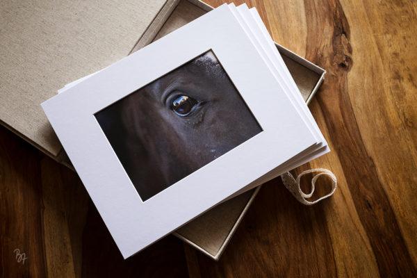 FineArt-Print vs. gewöhnlicher Fotoabzug – was ist der Unterschied?