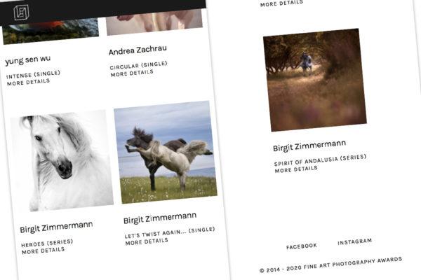 Erfolge bei den Fine Art Photography Awards