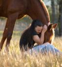 Pferdefotografie bei München: Inniger Moment zwischen Mensch und Pferd