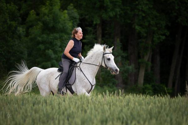 Auf 25 Jahre Freundschaft | Pferdefotosession bei München